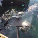 Marine Science Center ist Unterstützer von RemmyVR (VR Brille für Senioren)