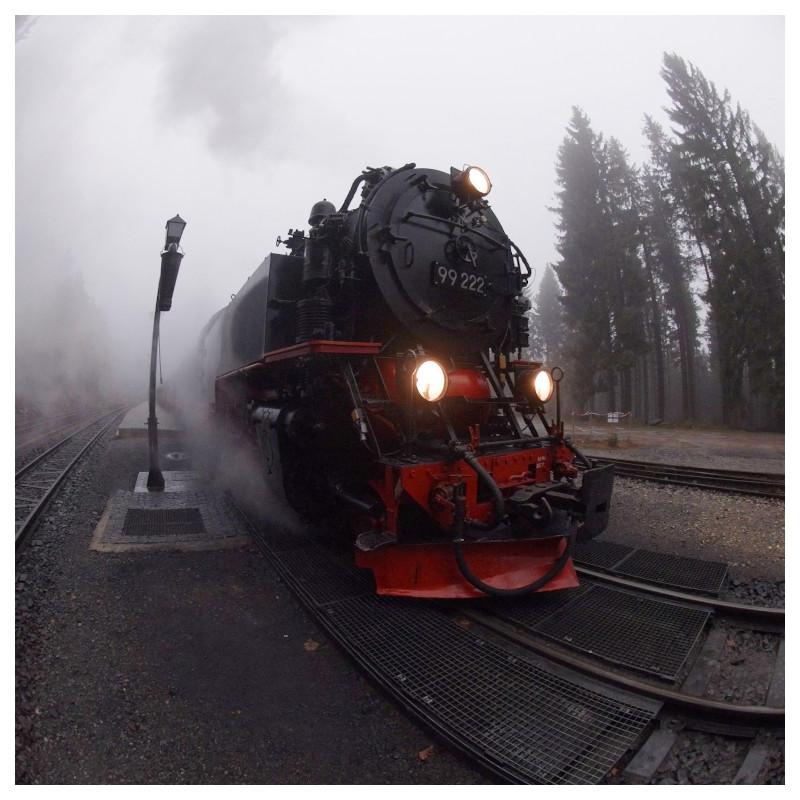 Erlebnistour im Harz
