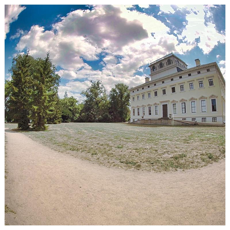 Gartenreichausflug & Schlossbesuch